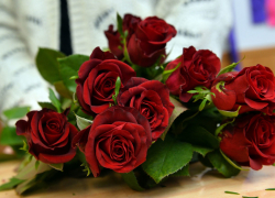 3 Types of Roses For Romantic Events